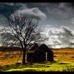 Lonely-House-at-Parkmore