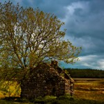 Parkmore-Home